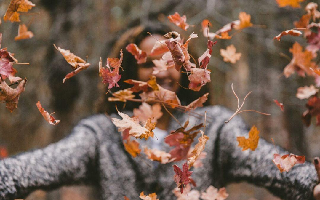 Aceite de semilla de cáñamo, el mejor remedio natural para afrontar el otoño