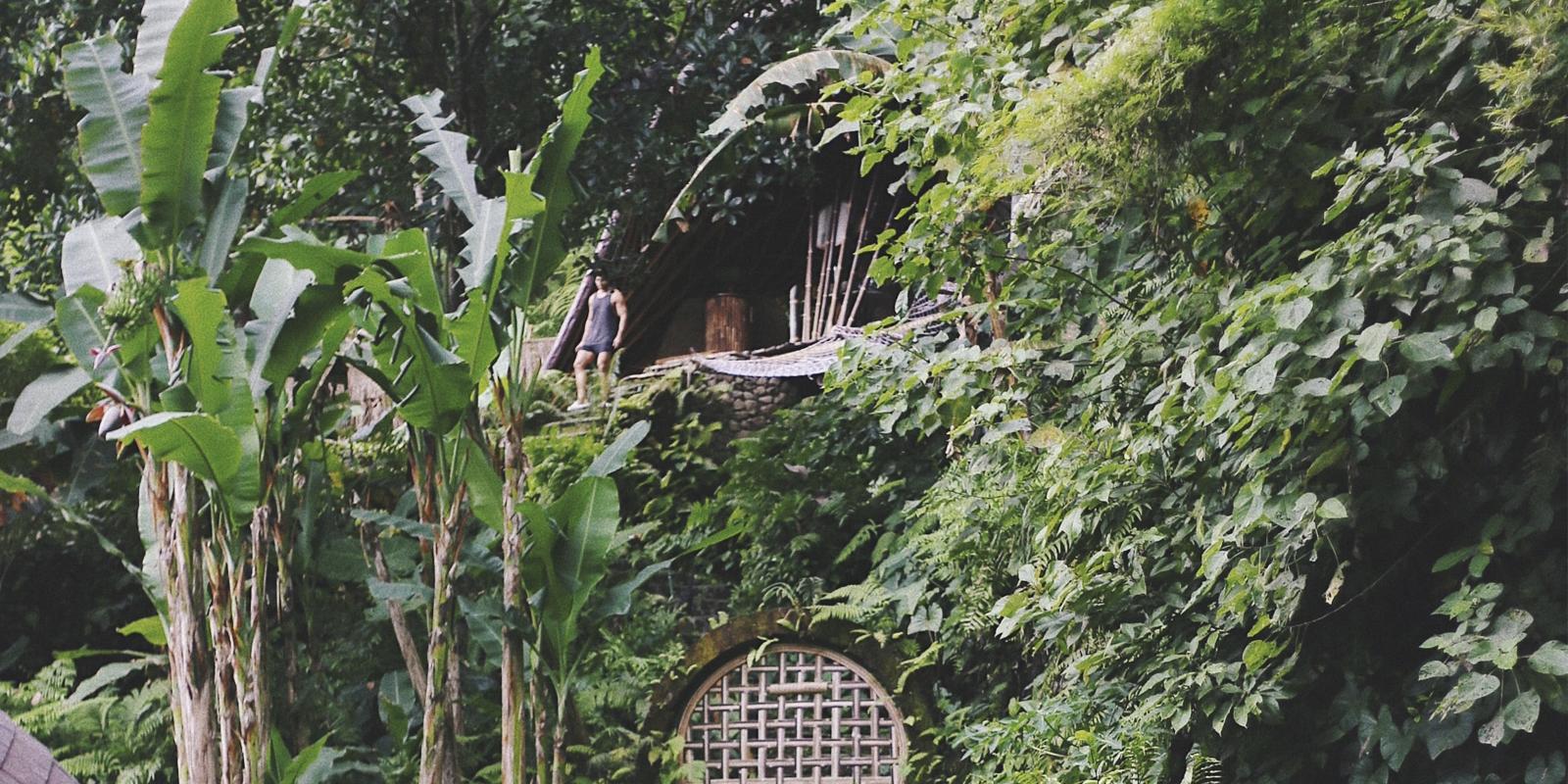 alojamiento ecologico respetuoso con la naturaleza