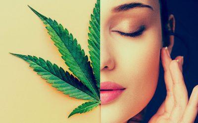 Cosmética de Cannabis: el último grito de moda en belleza y bienestar