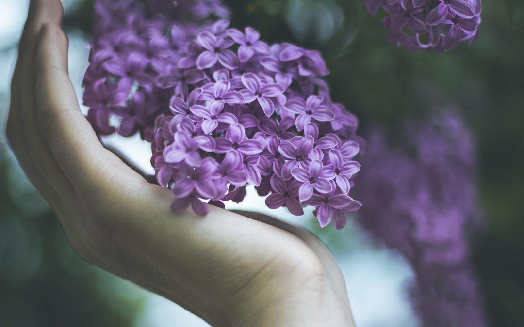 La mejor crema de manos y 5 consejos para tu rutina de cuidado natural