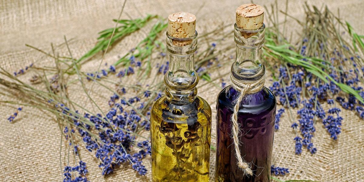 annabis utiliza la corteza de roble en combinación de extracto de semilla de cañamo para la formulación de su bálsamo Balcann, un tratamiento natural para el cuidado de la piel.